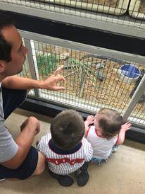 People looking at the animal displays at Animal World and Snake Farm in San Antonio.   Week in San Antonio, Texas