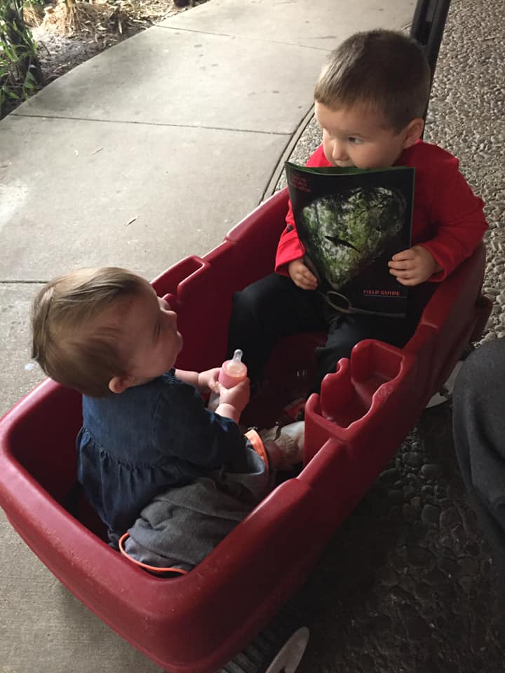 Little kids riding in wagon at the Dallas World Aquarium in Dallas.| Weekend in Dallas with Kids