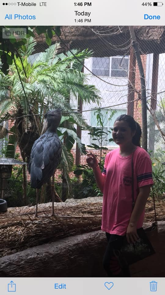Teen girl posing with wildlife at the Dallas World Aquarium in Dallas.| Weekend in Dallas with Kids
