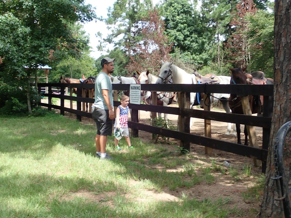 Man and little boy looking at the horses at the lake.| The Retreat at Artesian Lakes in Texas