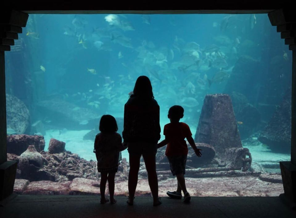 Woman with kids in a silhouette in front of aquarium.  Atlantis, Bahamas