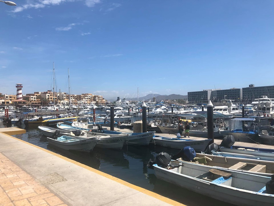View of Marina in Cabo.   Cabo, Mexico- The Best All Inclusive Vacation
