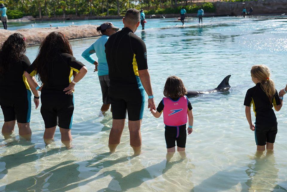 People in the water at the Dip N Discover at Dolphin Cay at the Atlantis resort.   Atlantis, Bahamas