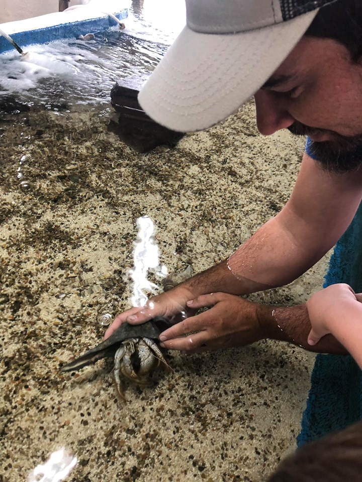 Man touching the sea creatures at the Gulfarium Marine Adventure Park in Destin.   Destin, Florida with the Kids