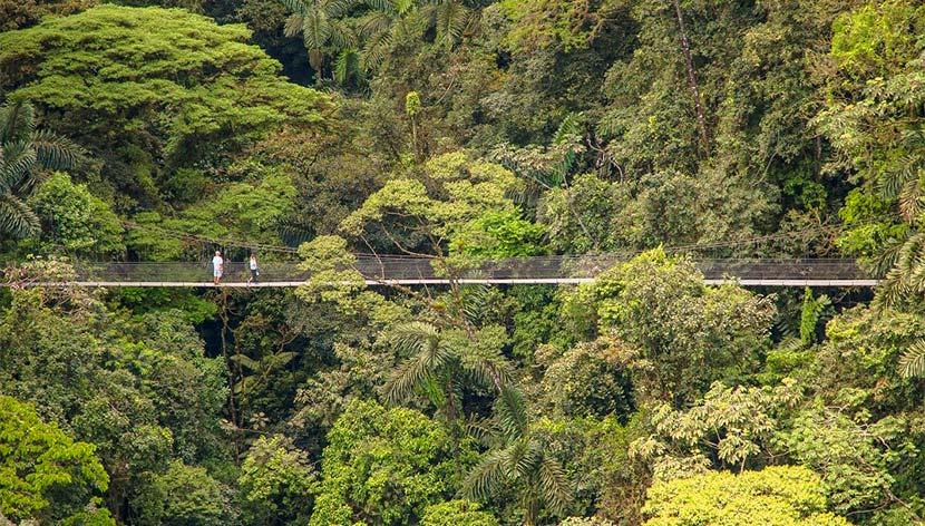 View of the La Fortuna Waterfall hanging bridges in Costa Rica.   Costa Rica, Arenal Volcano