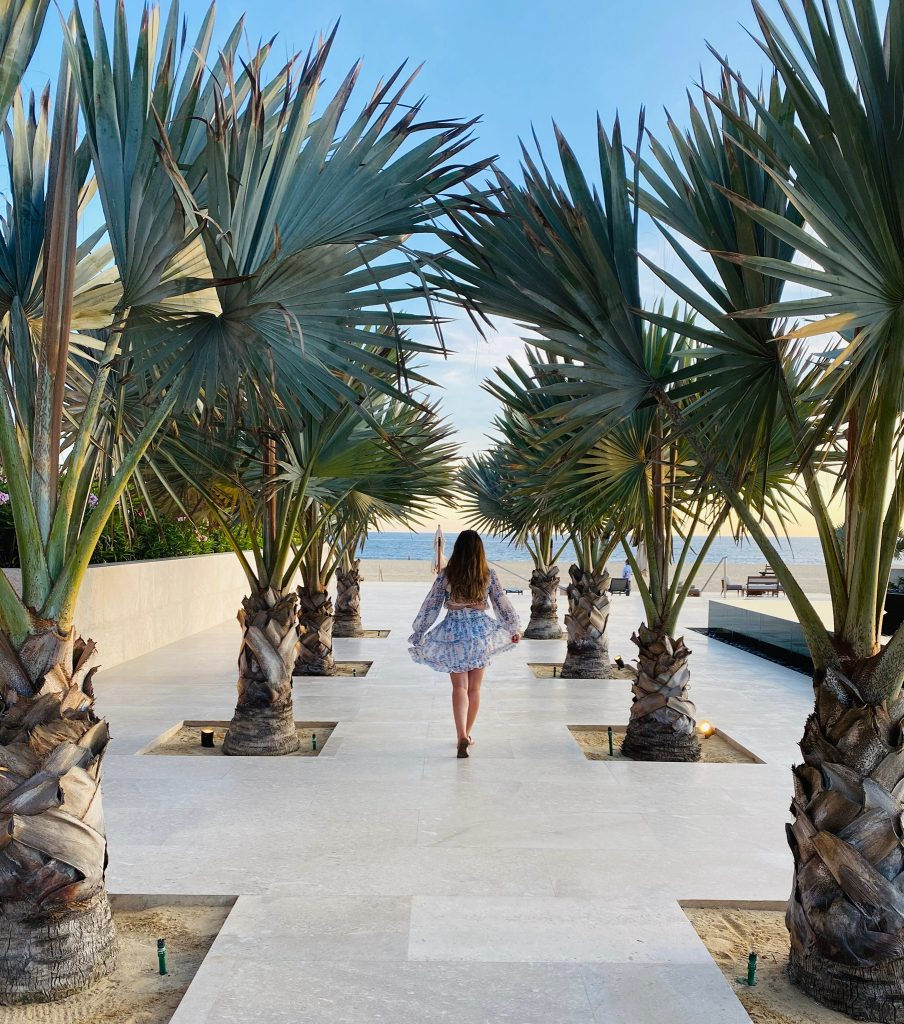 Woman walking down the sidewalk between large palm trees. | A Guide to Nobu Hotel Los Cabos - A Relaxing Girls Trip