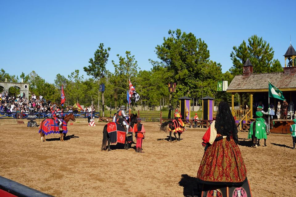 People performing in a show outside with horses and flags. | Texas Renaissance Festival