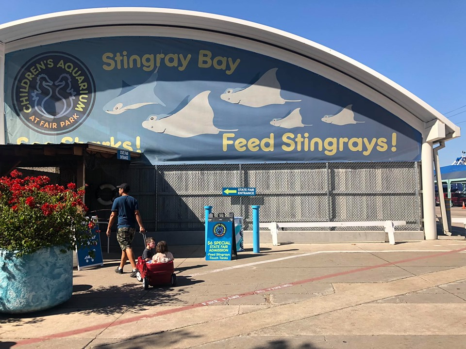 People walking to the Stingray Bay area to feed the stingrays at the fair. | State Fair of Texas-Dallas
