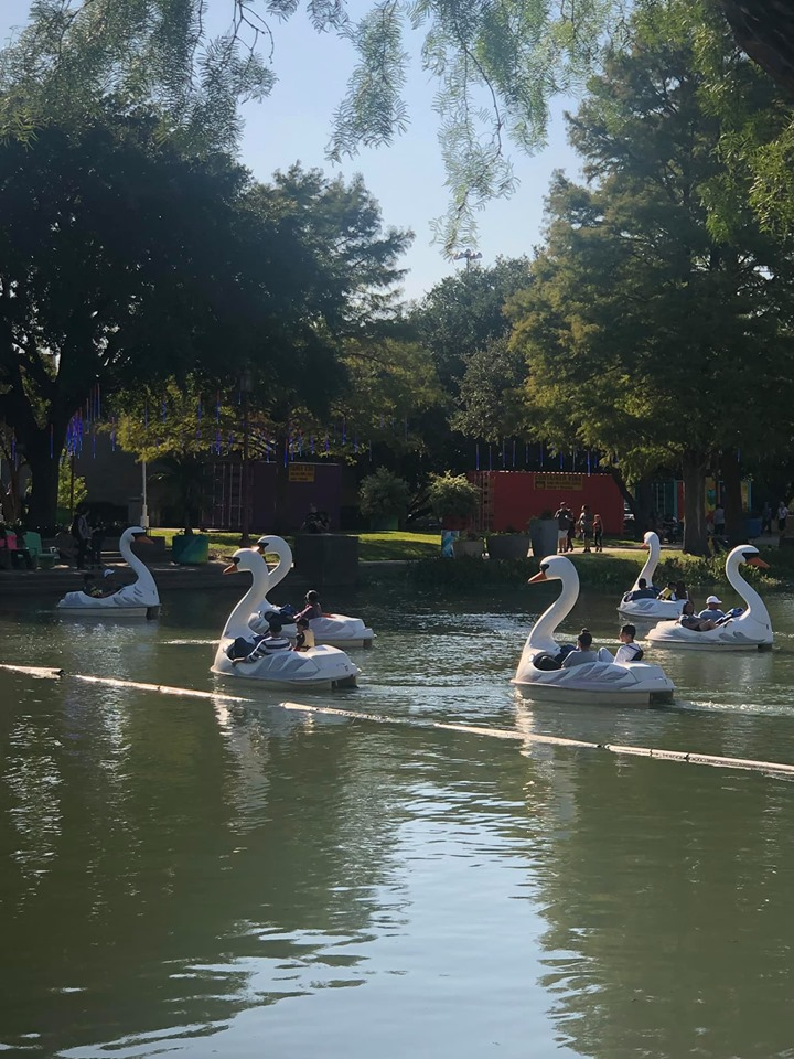 View of people riding in Swan Boats on the water at the fair. | State Fair of Texas-Dallas