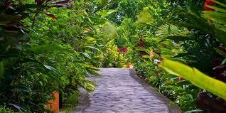 Trails at Nayara Spa and Gardens in La Fortuna.   Costa Rica, Arenal Volcano