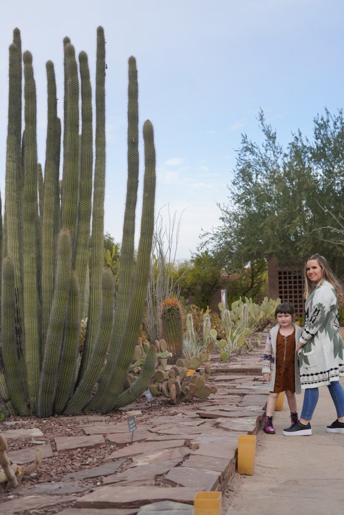 Woman with child in the desert botanical gardens posing near a tall cactus.| Arizona Itinerary with Kids