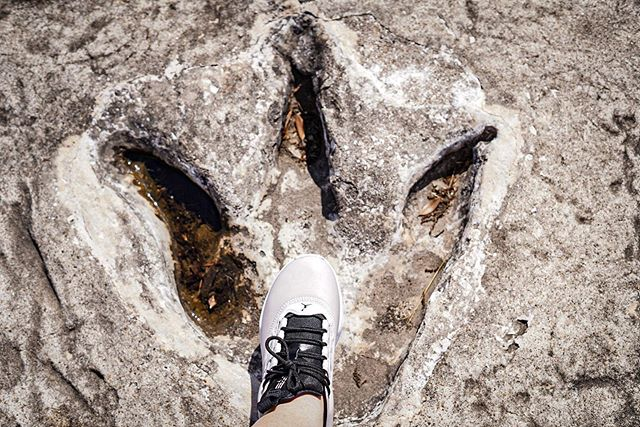 A person's foot stepping into a dinosaur track.   Dinosaur Valley State Park in Texas
