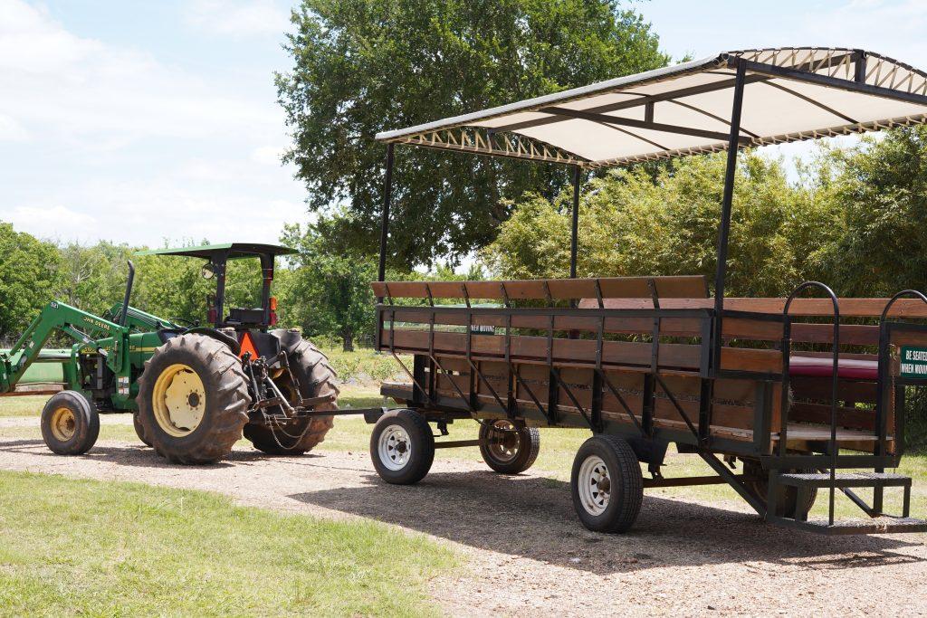 Hay ride at Blessington Fields. | Blessington Farms in Simonton, Texas