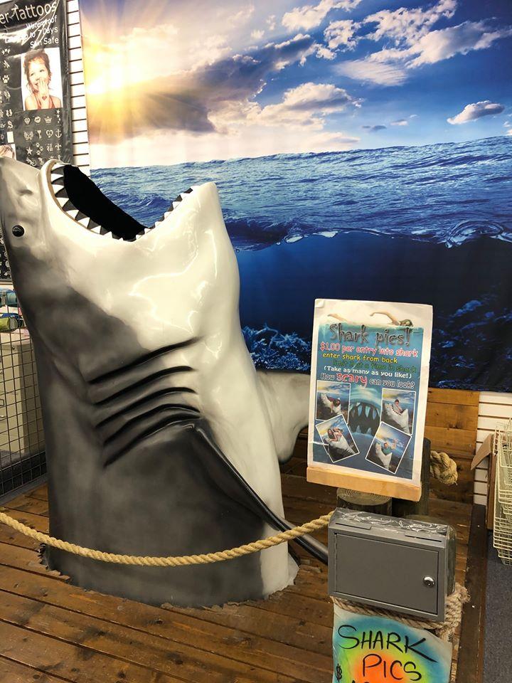 Shark statue.  Guide to Gulf Shores & Orange Beach Alabama