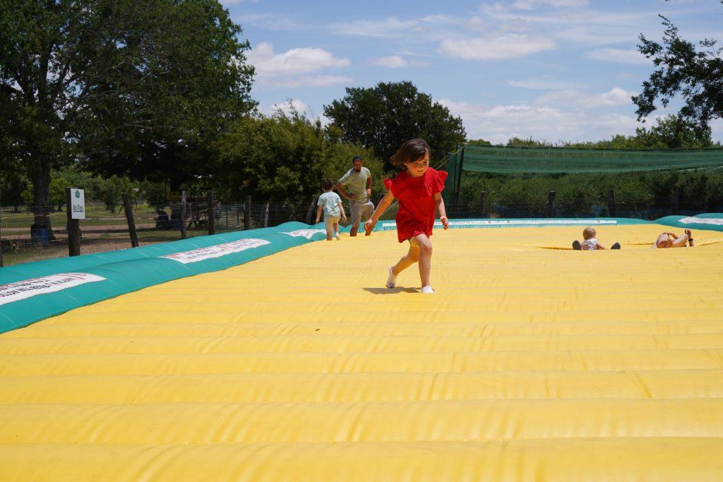Little girl jumping on trampoline at Blessington Fields. | Blessington Farms in Simonton, Texas