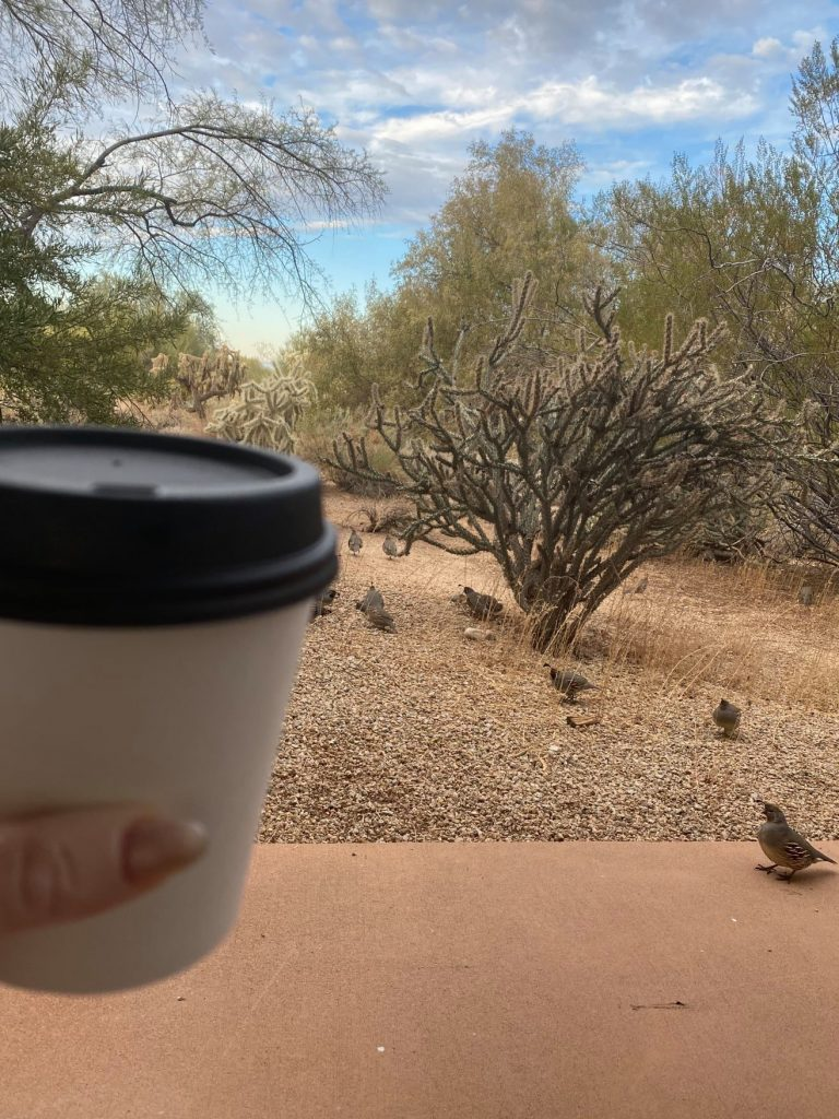Woman holding her coffee cup with a desert view in front of her. | Arizona Itinerary with Kids