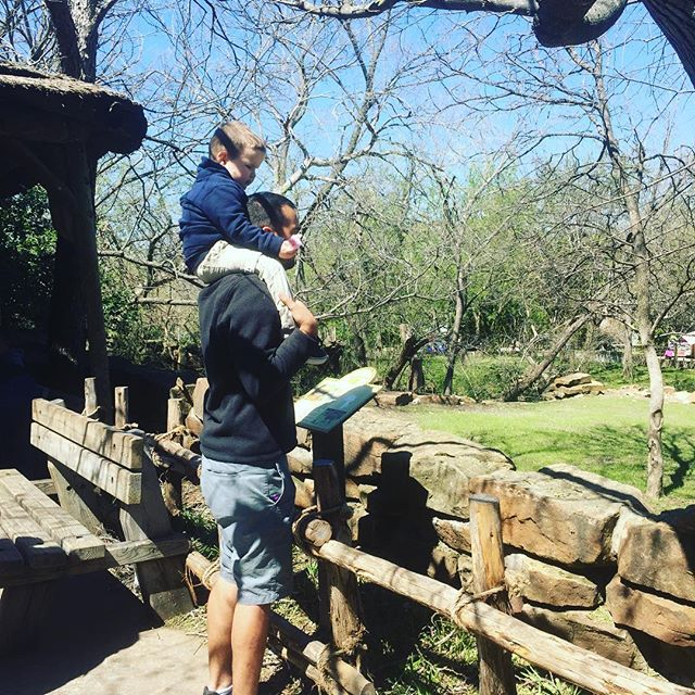 Man watching the animals with his son on his shoulders at Fort Worth Zoo in Dallas.| Weekend in Dallas with Kids